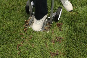 Step-N-Tilt-Core-Lawn-Aerator